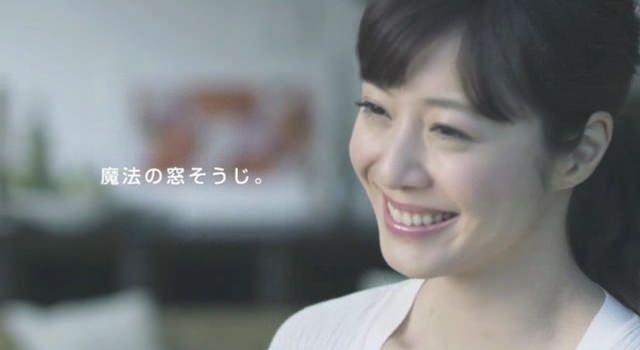 ケルヒャージャパン 窓用バキュームクリームクリーナー